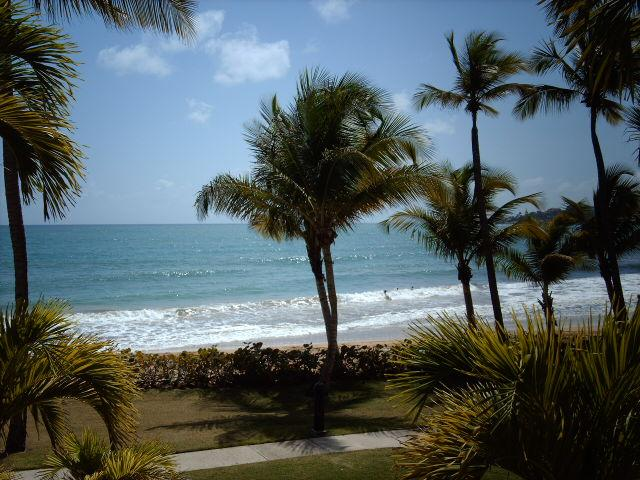 CRESCENT BEACH 267 - Image 1 - Humacao - rentals