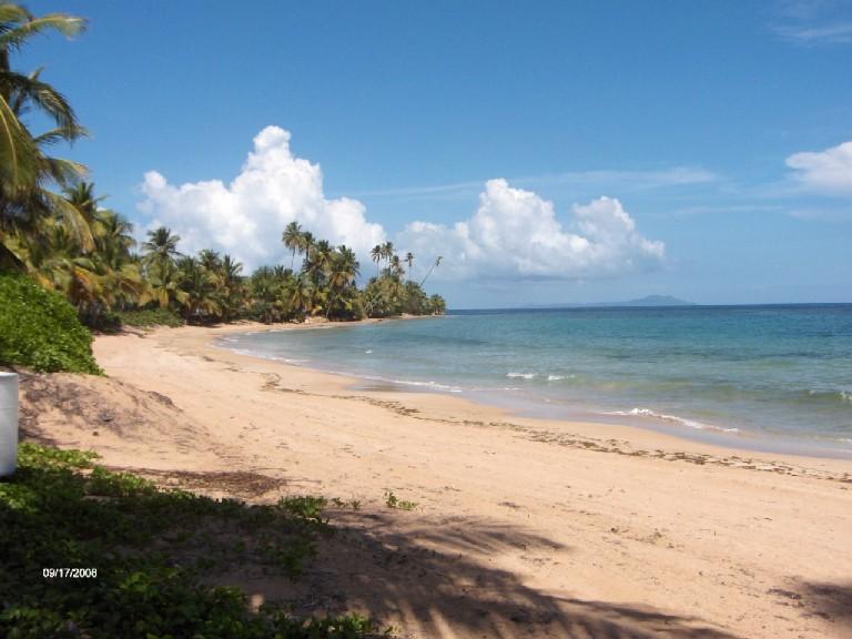 CRESCENT BEACH 259 - Image 1 - Humacao - rentals