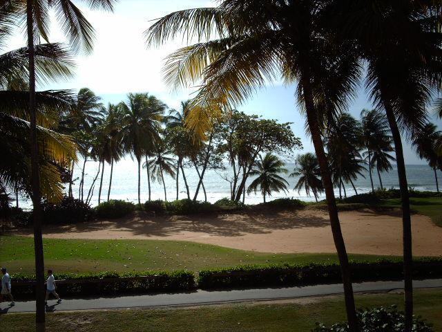 BEACH VILLA 233 - Image 1 - Humacao - rentals
