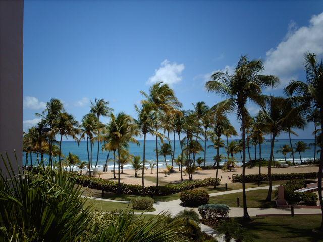 CRESCENT BEACH 214 - Image 1 - Humacao - rentals