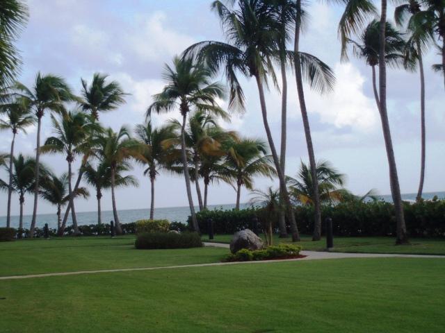CRESCENT BEACH 226 - Image 1 - Humacao - rentals