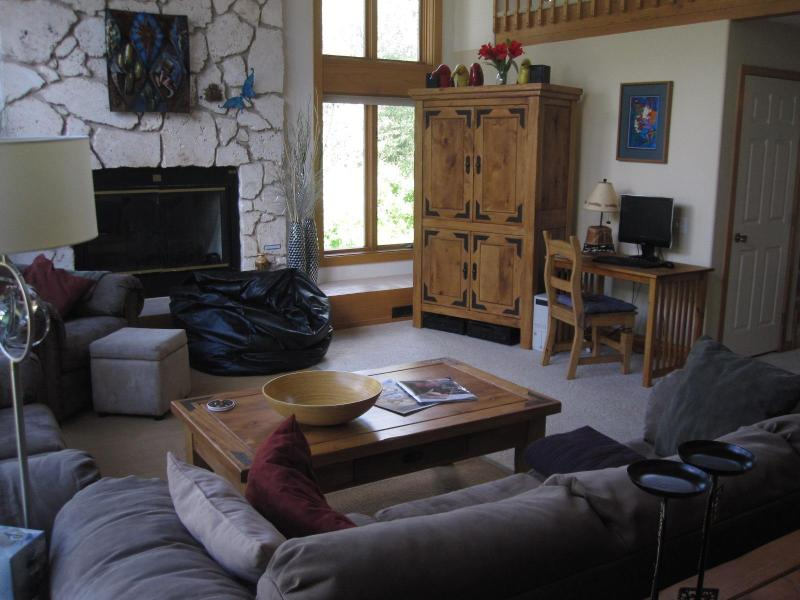Living Room - Spectacular Mountain Views in Three Bedroom House Vail, CO - Vail - rentals