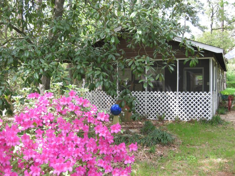 Front of cottage - Songbird Cottage - Conroe - rentals
