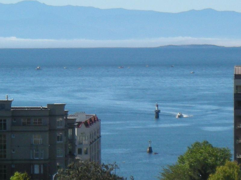 Sweeping Ocean Views - Beautiful Views - 10th Story Penthouse - Victoria - rentals