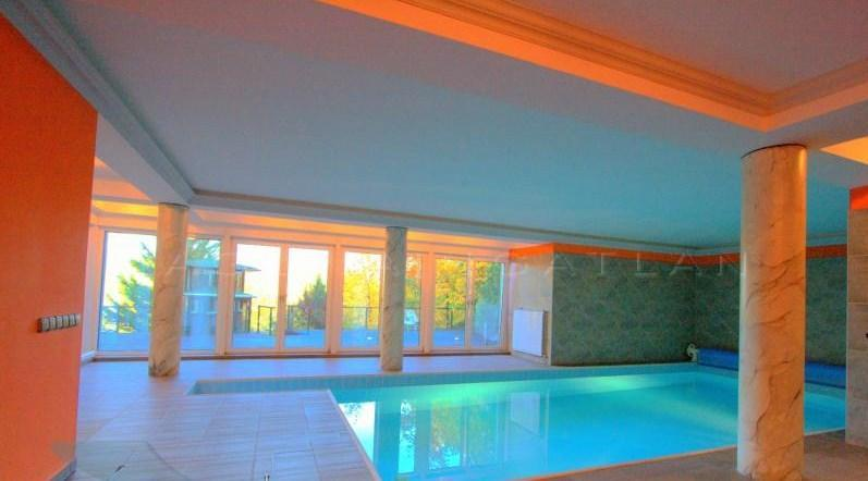 swimming pool - Villa Albert - 6 bedroom Home with indoor Pool - Budapest - rentals
