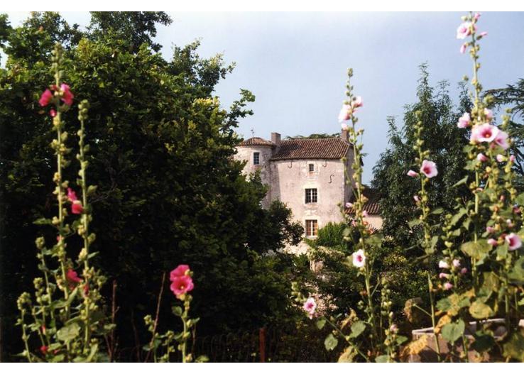 599 - Image 1 - Bagat En Quercy - rentals