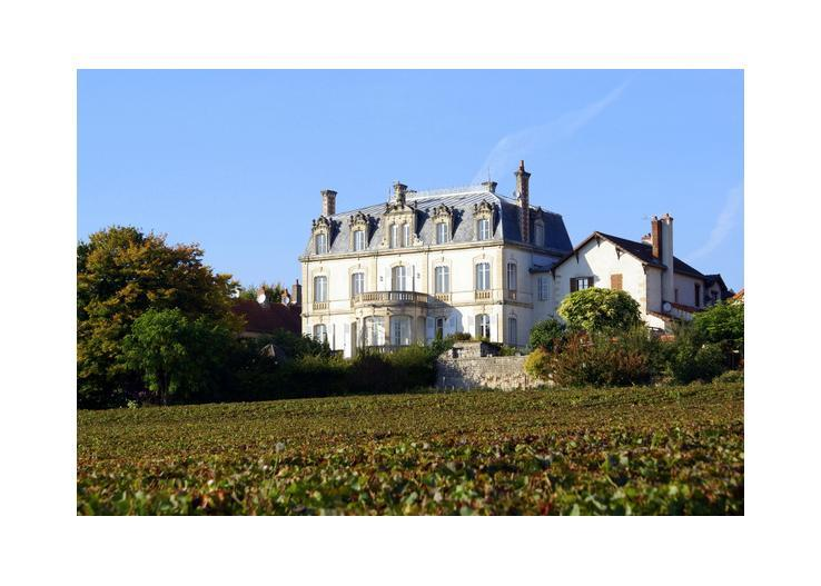 france/burgundy/chateau-de-mercury - Image 1 - Mercurey - rentals
