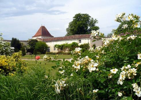 190-domaine-st-surin - Image 1 - Poitou-Charentes - rentals