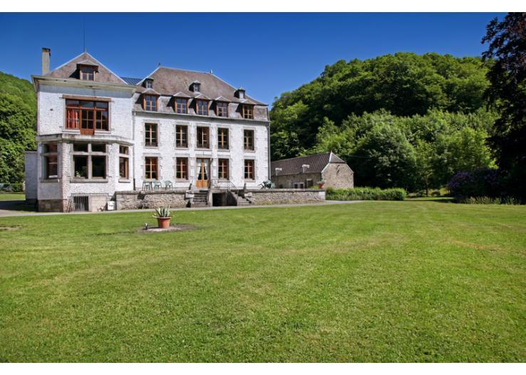 france/champagne/chateau-ridou-whole-site - Image 1 - Vireux-wallerand - rentals
