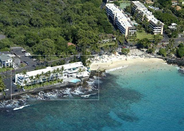 KMS109 $85.00 special all of April and May! DIRECT OCEANFRONT!!! - Image 1 - Kailua-Kona - rentals