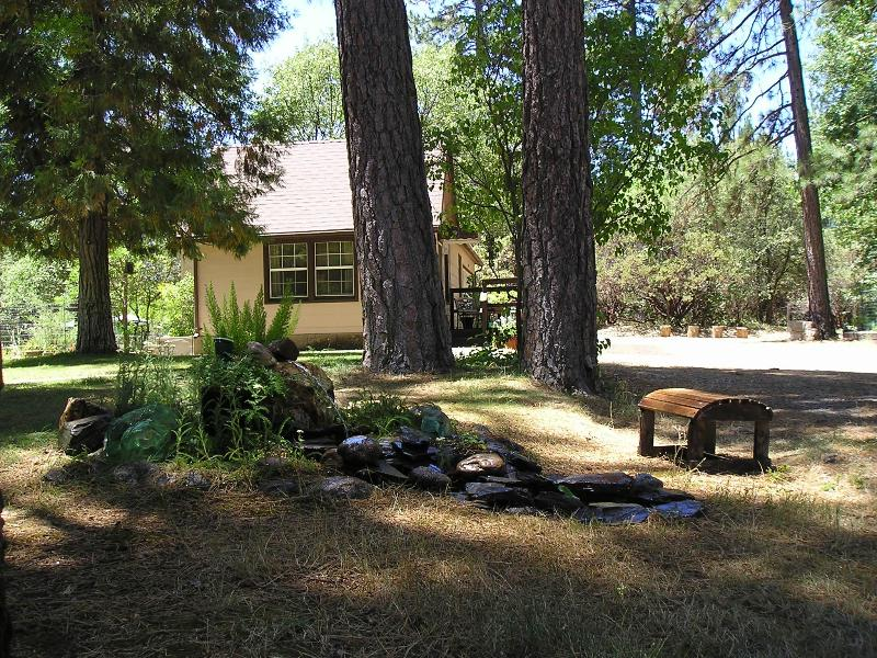 welcome to D&E Digs - D&E Digs~relax in the woods under starlit skies... - Yosemite National Park - rentals