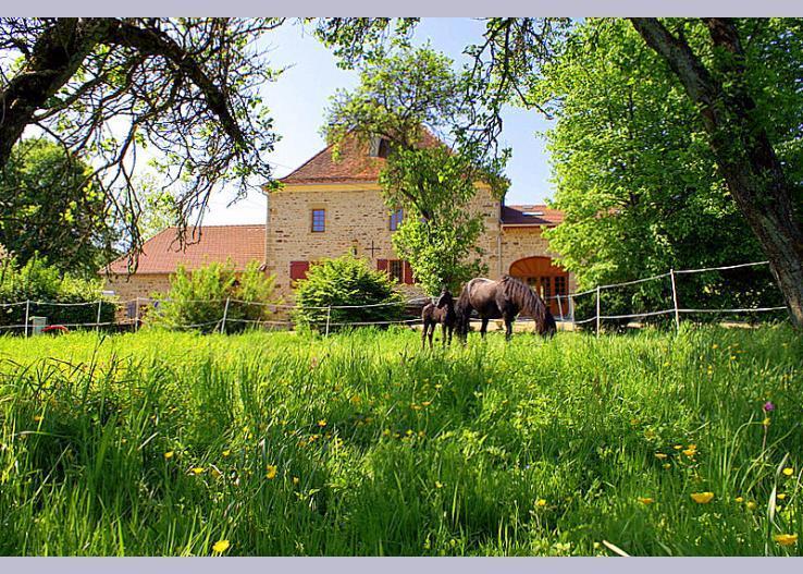 france/champagne/chateau-beaucharm - Image 1 - Bourbonne-les-Bains - rentals