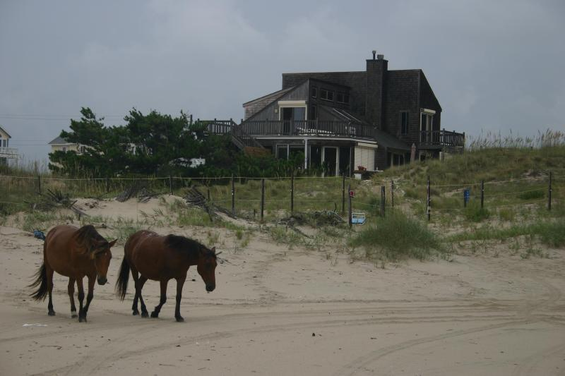 """Moonshadow"" - Charming Private Oceanfront Home in 4X4 Area - Corolla - rentals"
