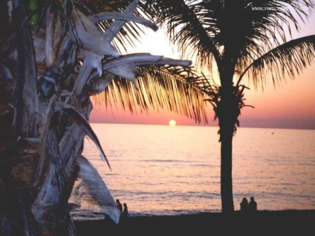 Venice Florida Romantic Sunset - BEACHFRONT VENICE ISLAND CONDO: LANAI, OLYMPIC POOL, FREE Wi-Fi, GORGEOUS SUNSET - Venice - rentals