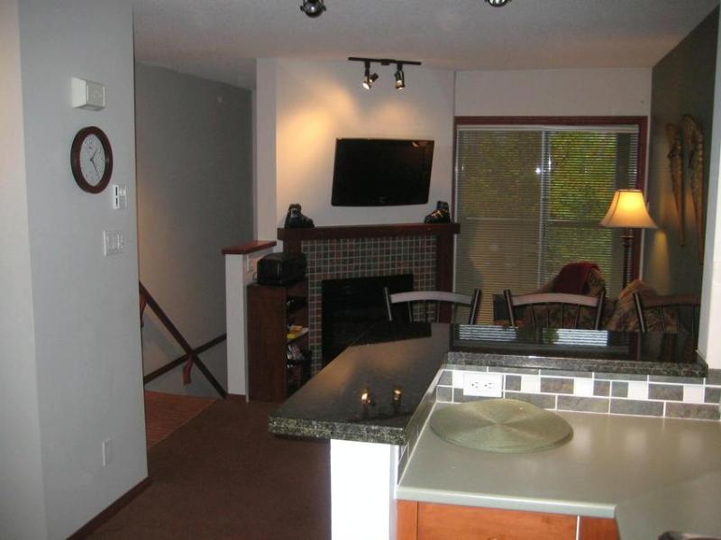 new flat screen T.V. and D.V.D player - Sandy & John Casano - Whistler - rentals