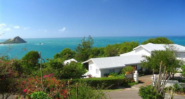 Wild Orchid - Image 1 - Saint Lucia - rentals