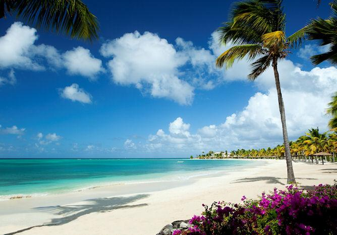 - Jumby Bay - Sunflower - Antigua - rentals