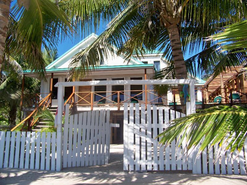 Iguana House - Iguana House 3B/3B Ocean Front Beach House - San Pedro - rentals
