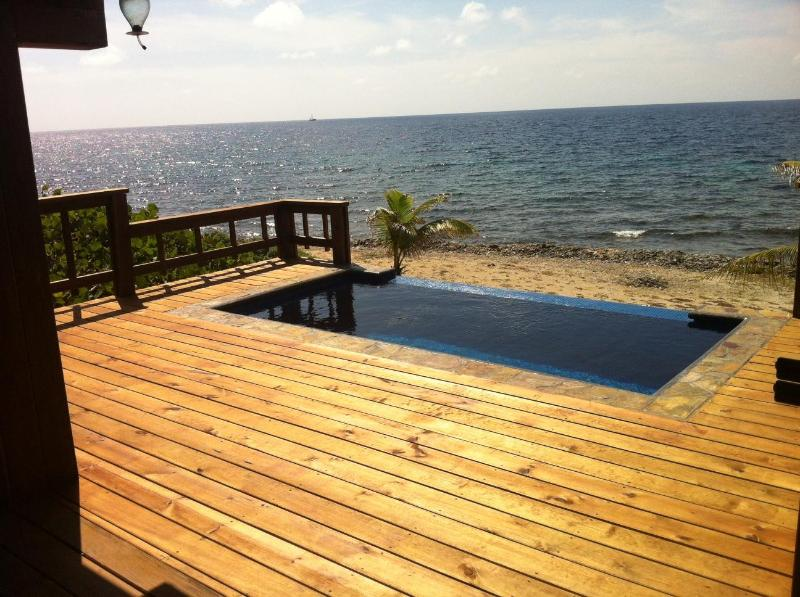 Infinity pool - Coral Beach House with a Panoramic View - Roatan - rentals