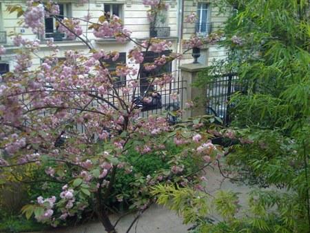 Garden2 - Image 1 - Ile-de-France (Paris Region) - rentals