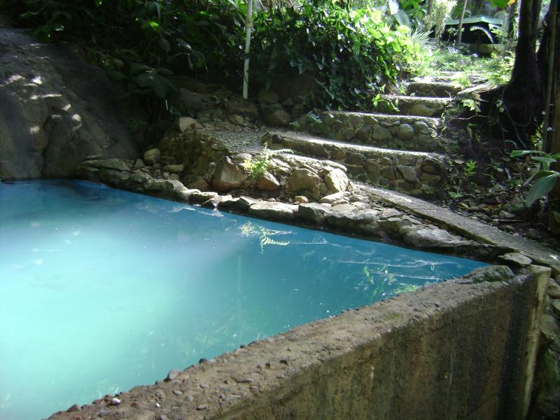 (Rated Excellent 2013) Nature swimming pool - El Yunque Hamilton Forest, Log Cabin  (Top Vacatio - Rio Grande - rentals