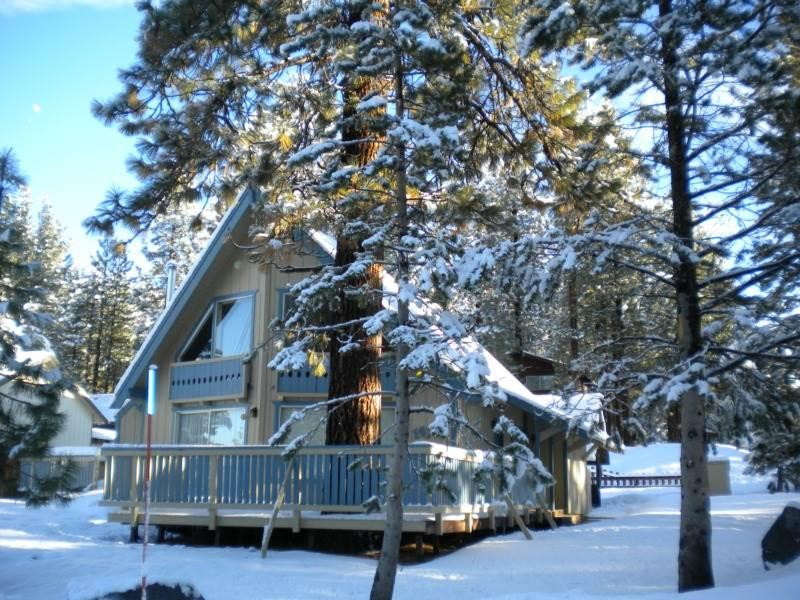 1470 Murietta Pet Friendly Cabin - Image 1 - South Lake Tahoe - rentals