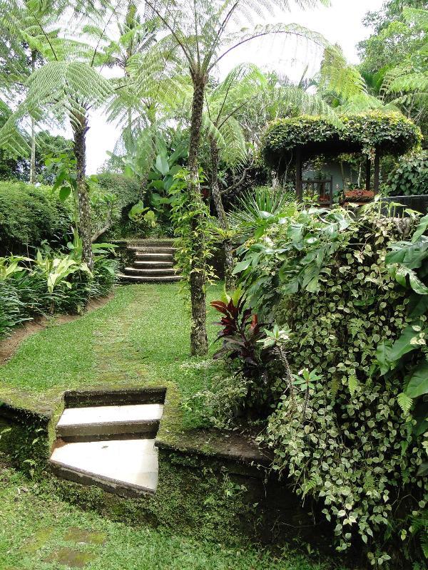 Lush gardens greet your day - Villa Air Terjun - Bali Off The Beaten Track - Ubud - rentals