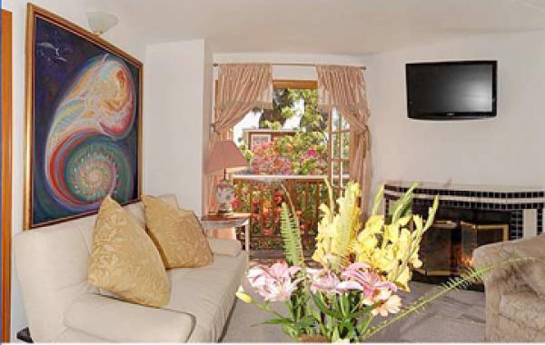 Living Room - Santa Monica Fabulous Beach Apartment - Santa Monica - rentals