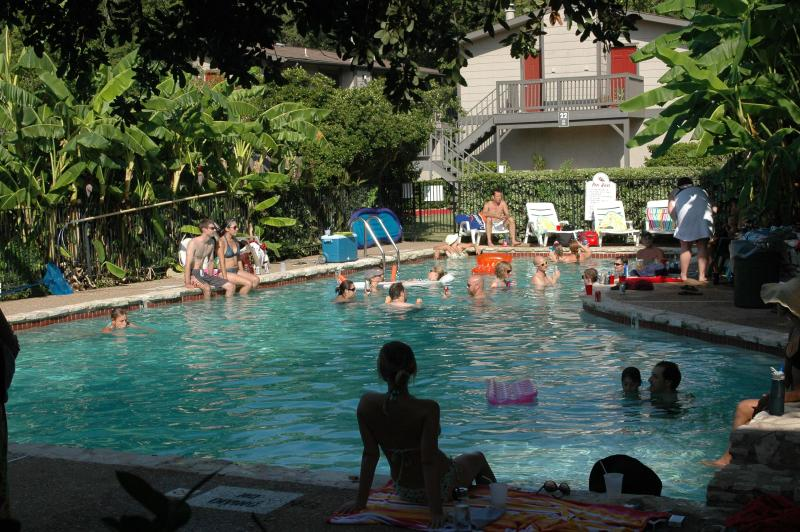 Condo Complex Pool - Downtown Fantastic Location by the month and more. - Austin - rentals