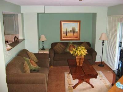 Living Room - Susan Jenkins - Whistler - rentals