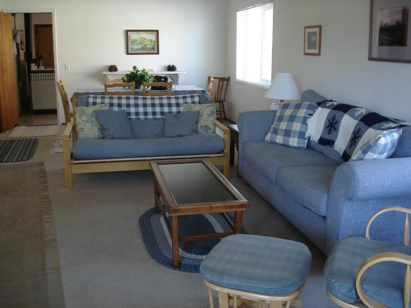 Living Room - The Mountain House: Fresh Comfort - Ski Mt. Shasta - McCloud - rentals
