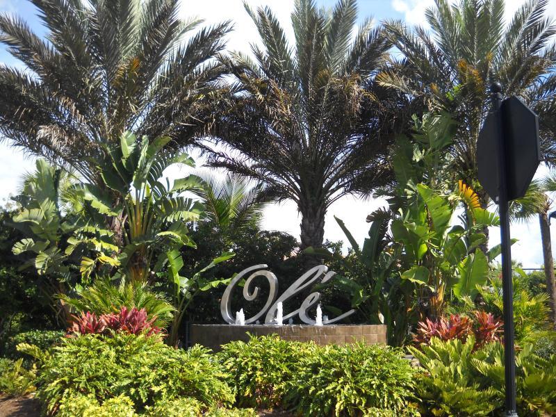Paradise in Naples - Paradise in Naples Florida - Naples - rentals