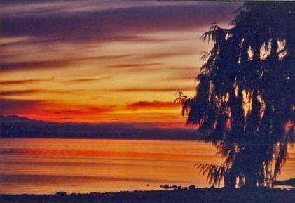 Golden Skies await you at A Herons Rest - Breathtaking 3 Bedroom Vancouver Island Ocean and Beach Front Home in Bowser - Bowser - rentals