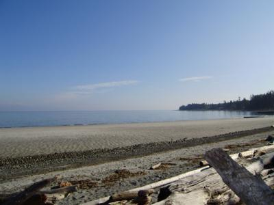 Your view from The Great Escape - Spectacular 3 Bedroom Comox Valley Beach Front Home at Miracle Beach - Comox - rentals