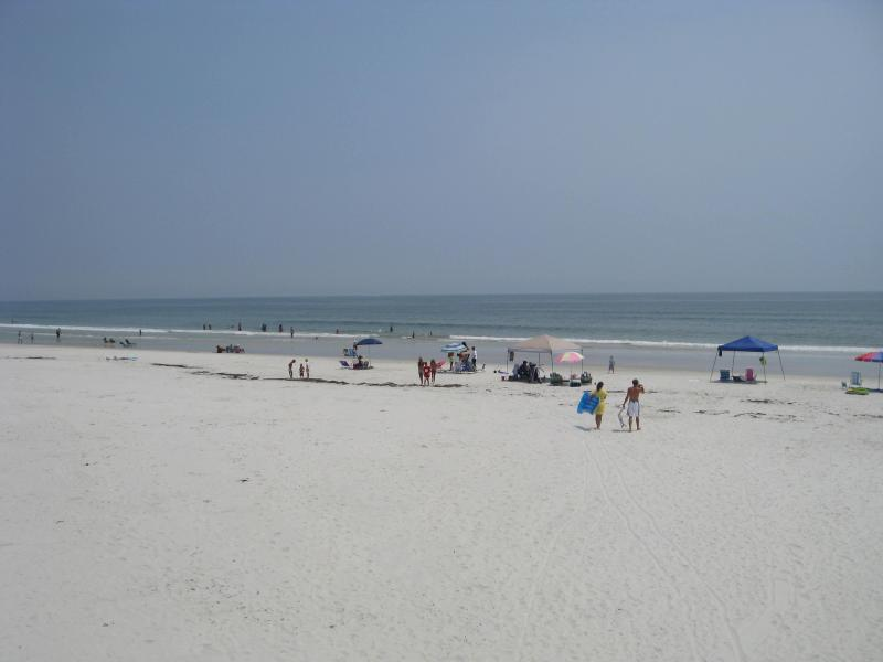 Beautiful, Private, Non-Driving Beach - 1st Floor 2/2 Awesome Oceanview Condo Castle Reef - New Smyrna Beach - rentals