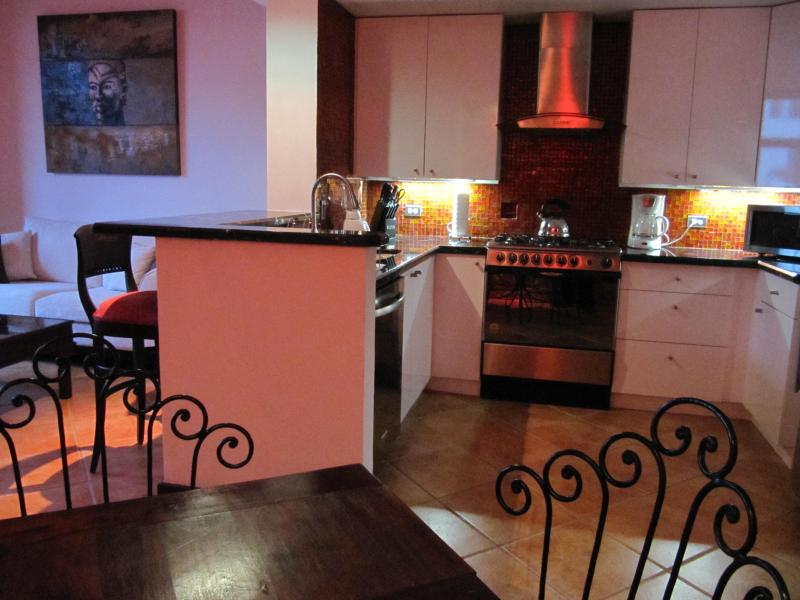 Modern American kitchen - Stunning Colonial 1 & 2 bdr Loft in CASCO VIEJO - Panama City - rentals