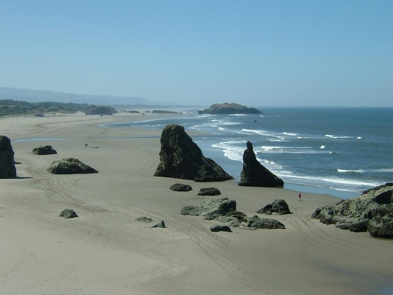 Beach at End of Path - You Can Walk for Miles in Either Direction - Steps to Best Beach,No Stairs!,Couples,Golf,Nice! - Bandon - rentals