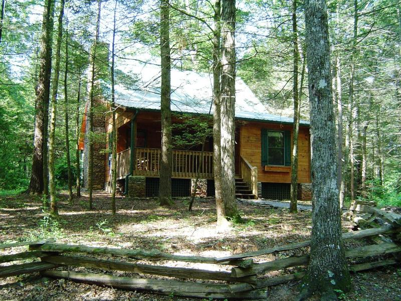 """Appalachian""- Beautiful, Clean, Wireless, No Fees - Image 1 - Townsend - rentals"