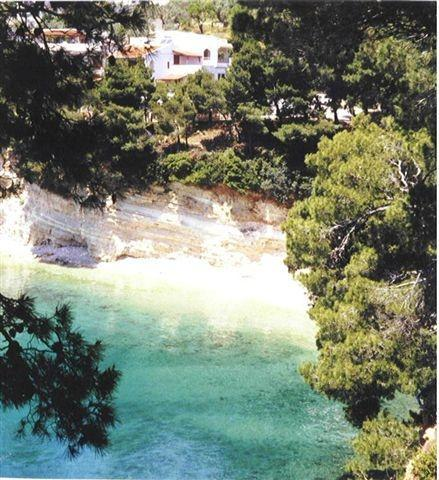 villa Dolphin and the beach - Superb seafront Villa ,5 bdr, beach at 80 metres - Alonissos - rentals