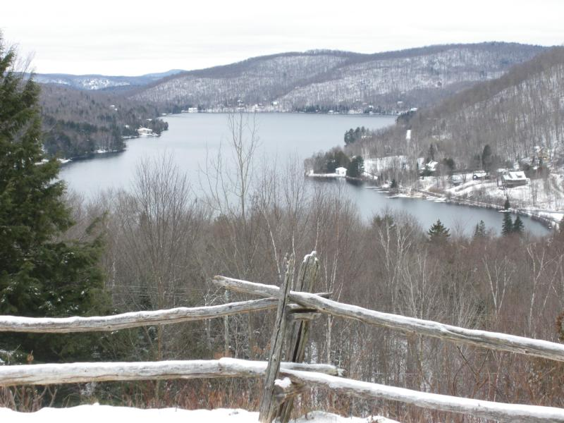 Lakeview winter - Mont Tremblant Lakeview Terrace - A Real Gem - Loo - Mont Tremblant - rentals