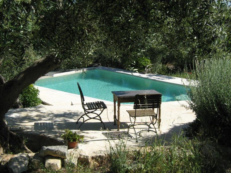 pool and garden - Trullo Caterina perfect for 2 to relax and explore - Cisternino - rentals