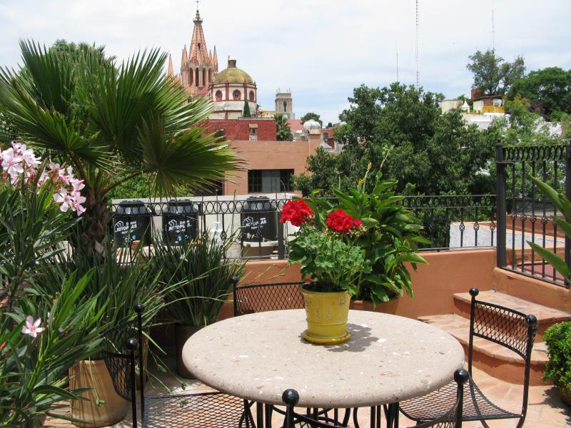 Rooftop Terrace - Casa Carolina del Sur.....3bdrm/3bth in Centro - San Miguel de Allende - rentals
