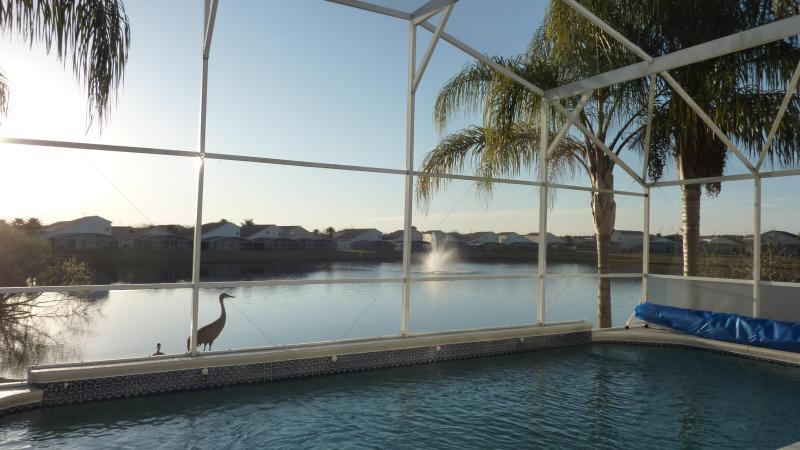 stunning lake view - Lake View Villa Orlando - Davenport - rentals