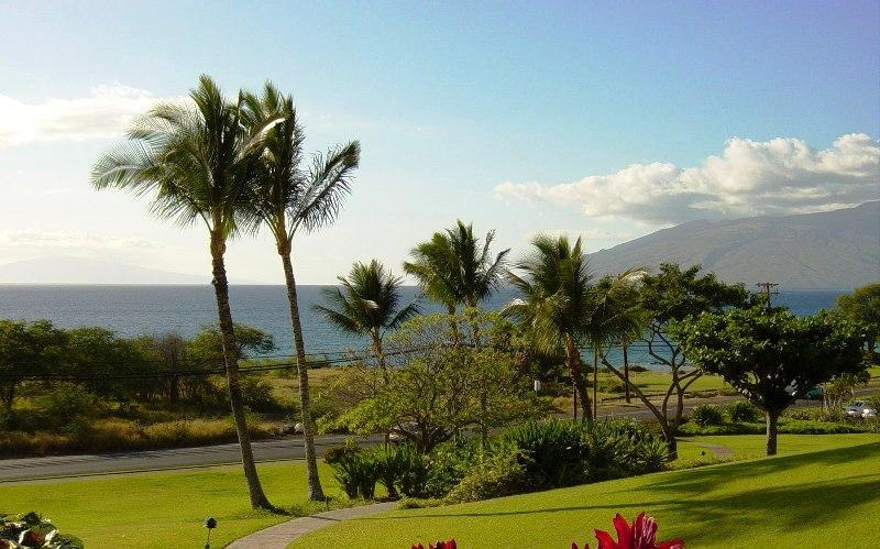 The view from the front of the complex as you head out for your morning walk. - Maui Kamaole 1Bd/2Ba GV Condo @ Wailea Border K109 - Kihei - rentals