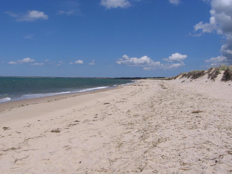 Walk to Brewster's Best Child Safe Beach - Image 1 - Brewster - rentals