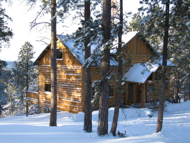 front cabin view coming down the driveway - Luxury Cabin in the Black Hills of South Dakota - Lead - rentals
