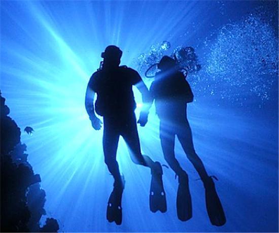 - SCUBA Dive in Bequia 2 Tank Dive - - - SCUBA Dive in Bequia 2 Tank Dive - - Bequia - rentals