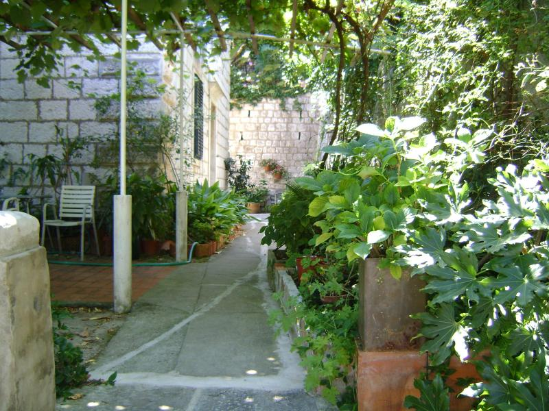 In front of the house - APARTMENT  DUBROVNIK RAGUSA - Dubrovnik - rentals