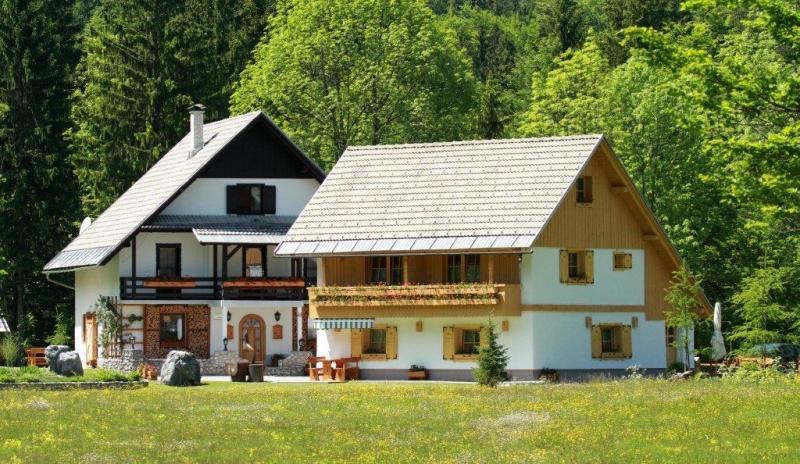 Apartments Alpik - outside - Alpik Apartment at Lake Bohinj - Bohinjsko Jezero - rentals