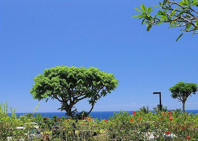 Cliffs 5106: Ground floor ocean view condo, resort amenities, great rate. - Image 1 - Princeville - rentals